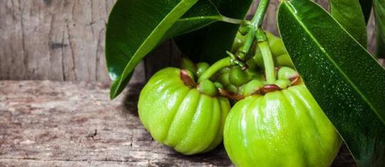Prendre le Garcinia Cambogia