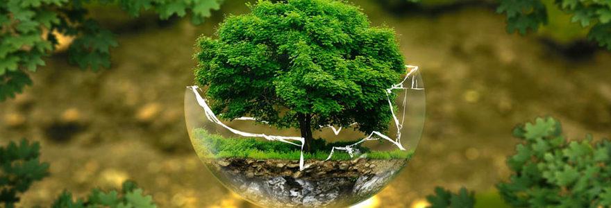 métier dans l'environnement